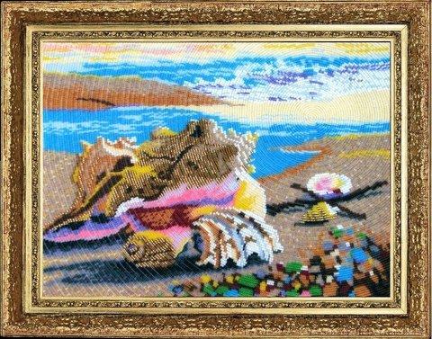 324 Морские ракушки