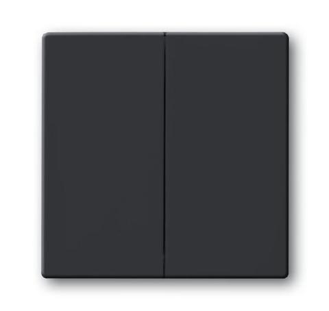 Клавиша двухклавишного выключателя/переключателя/кнопки. Цвет Антрацит. ABB (АББ). 1751-0-2930