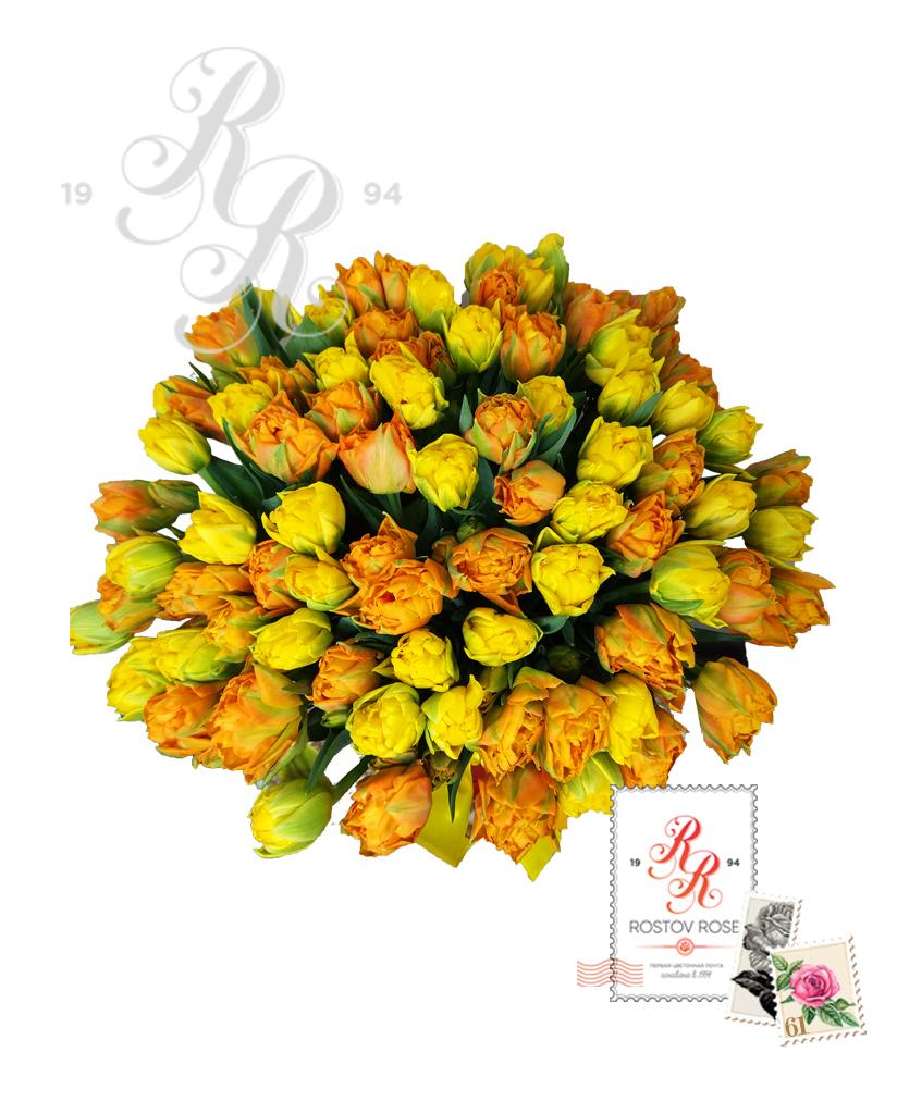 101 Пионовидный тюльпан в коробке