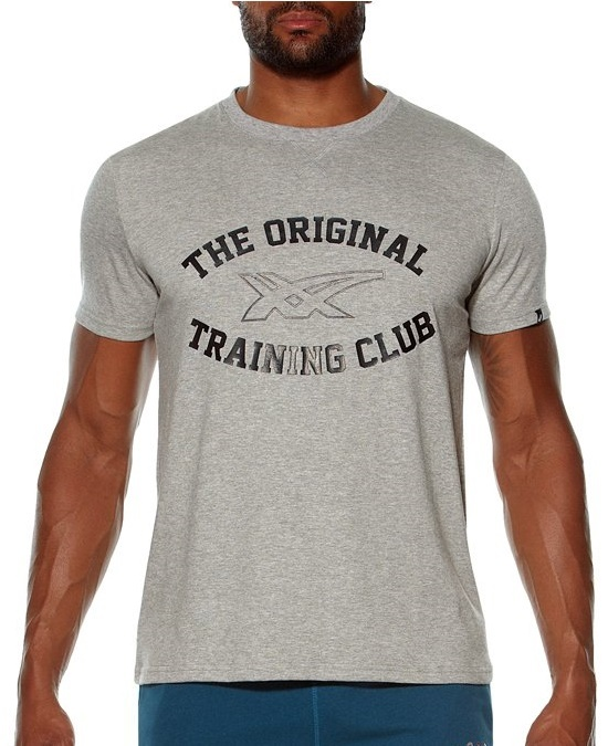 Мужская футболка Асикс Graphic SS Top (131530 0714) серая фото