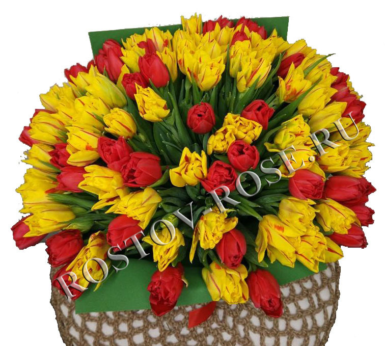 Букет из 101 красно-желтого пионовидного тюльпана