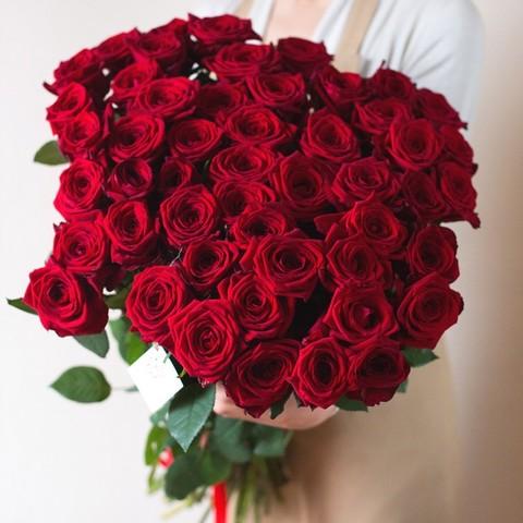 51 красная роза 70 см (PBFlora) #19168