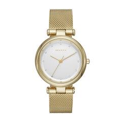 Наручные часы Skagen SKW2486