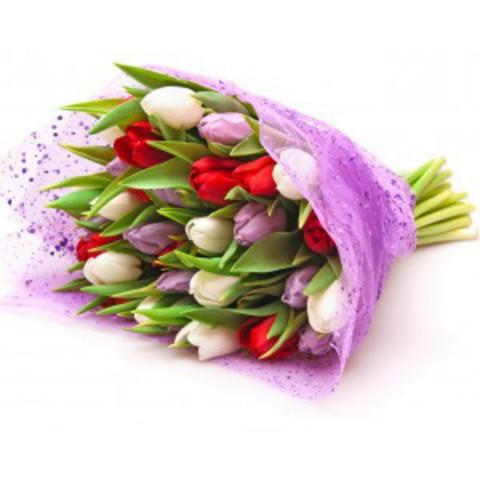 Букет микс из тюльпанов (красные, сиреневые, белые)