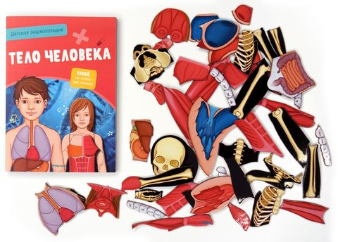 Тело человека. Детская энциклопедия (в коробке)