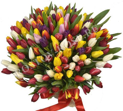 Букет разноцыетных тюльпанов