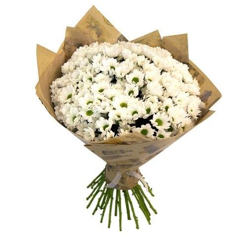 Букет 15 кустовых хризантем (Bakardy white)