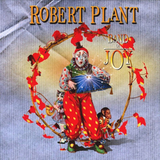 Robert Plant / Band Of Joy (2LP)