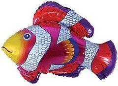 F Мини фигура Рыбка-Клоун, Фуше / Cloun-fish (14