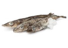 Ледяная рыба замороженная~1кг