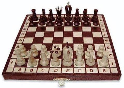 3028 Шахматы