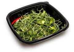 Салатный микс микрозелень № 5, 70г