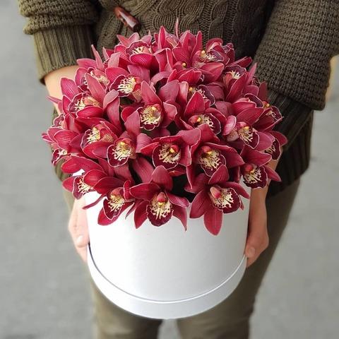 Коробка с орхидеей стиль 4