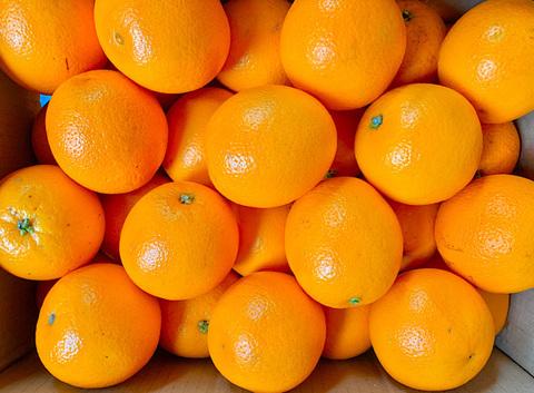 Коробка Апельсинов, 15 кг