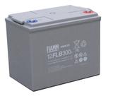 Аккумулятор FIAMM 12 FLB 300 P ( 12V 80Ah / 12В 80Ач ) - фотография