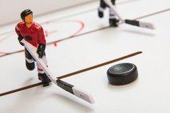 Хоккей «Edmonton»