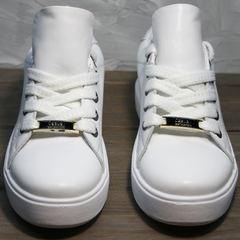 Белые кеды женские кожа Molly shoes 557 Whate