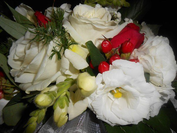 Живые цветы Алматы