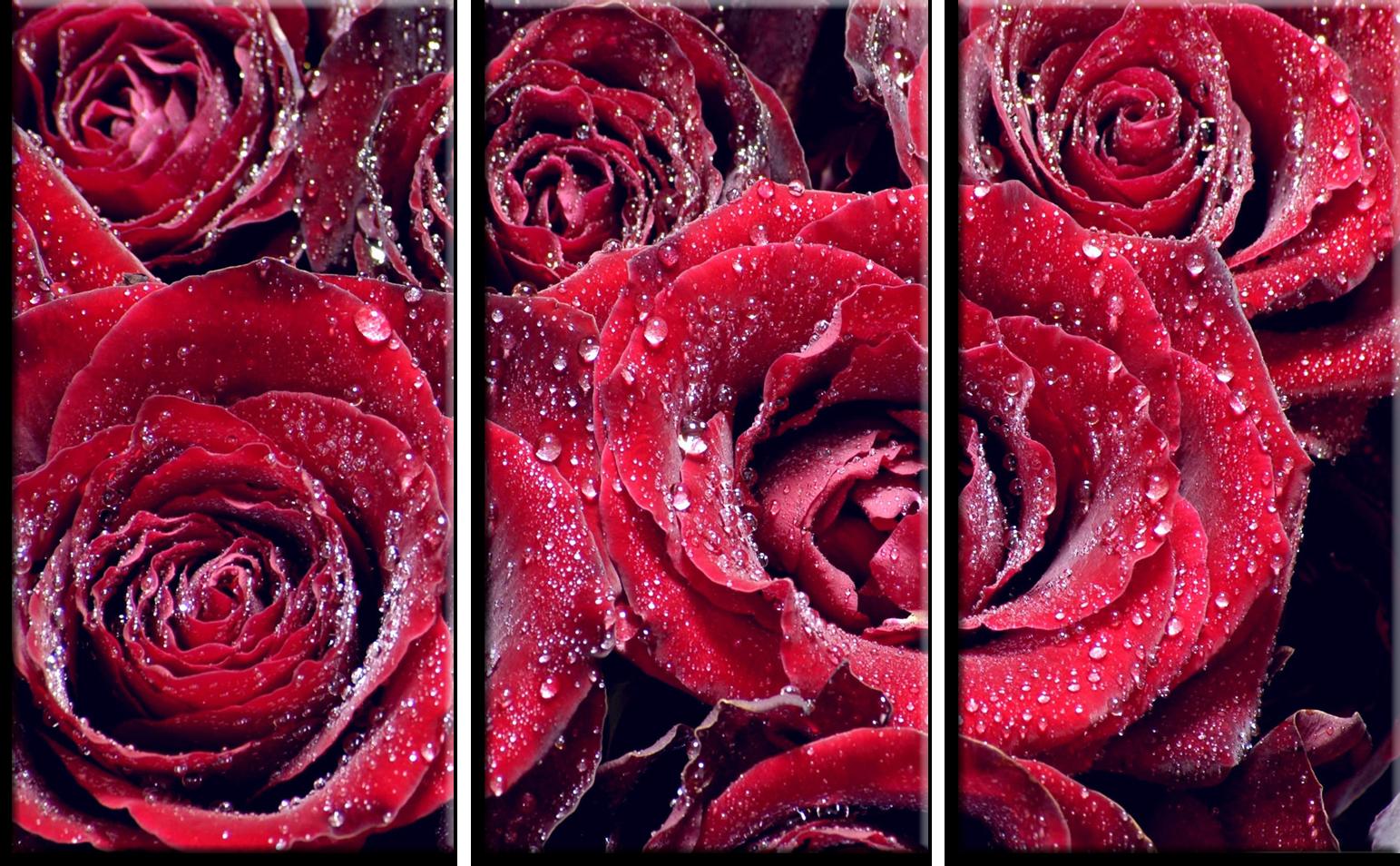 """Модульные картины Модульная картина """"Розы"""" М101.png"""