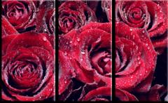 """Модульная картина """"Розы"""""""