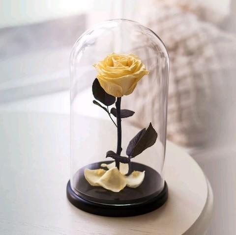 Роза в колбе Premium Желтая