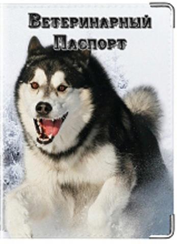 """Обложка для ветеринарного паспорта """"Хаски"""" (2)"""