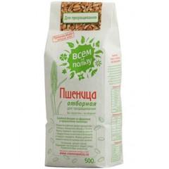 Пшеница Отборная для проращивания, 500 гр. (Всем на пользу)