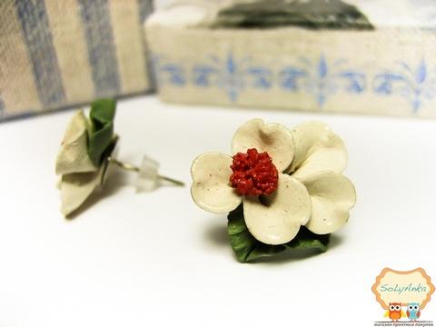 Порцелянові сережки Примула біла