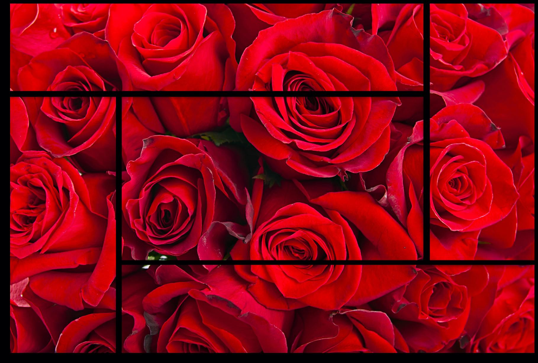 "Цветы Модульная картина ""Красная элегия"" М770.png"