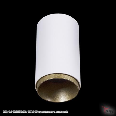 16206-9.5-001RTB MR16 WT+SGD светильник точ. накладной