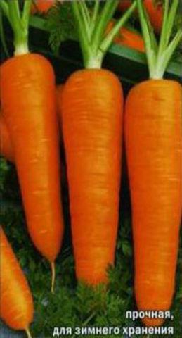 Семена Морковь Шантанэ 2461 б/п