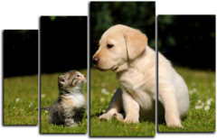 """Модульная картина """"Кошка и собака"""""""
