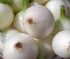 Лук белый салатный не острый (3 шт).