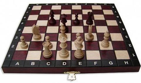 3011 Шахматы