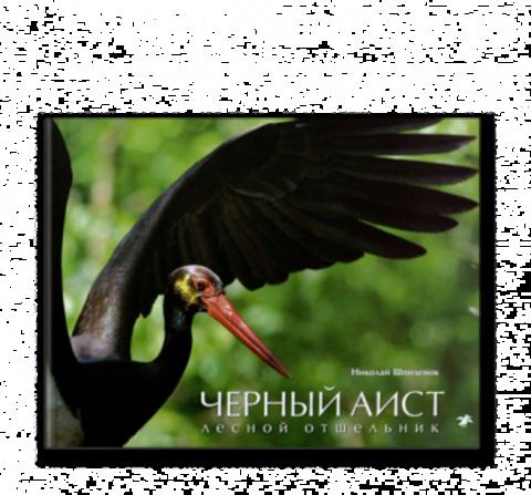 Николай Шпиленок «Белый аист. Посланец неба. Черный аист. Лесной отшельник»