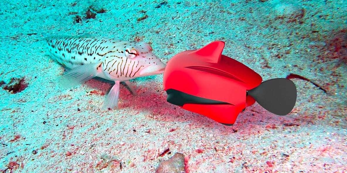 Подводный дрон RoboSea BIKI V1.0 красный в воде