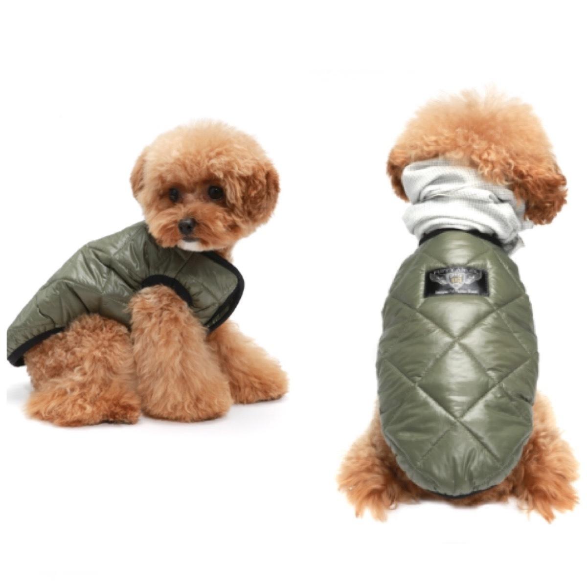 купить куртку для собаки