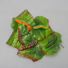 Гусеница на листе 12шт