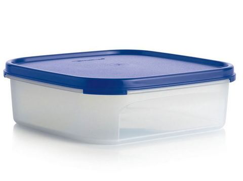Контейнер Компакт (1,1 л) в синем цвете tupperware