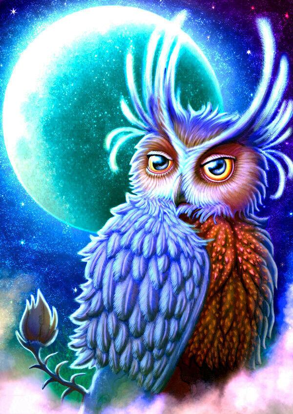 Картина раскраска по номерам 40x50 Удивительная сова ...