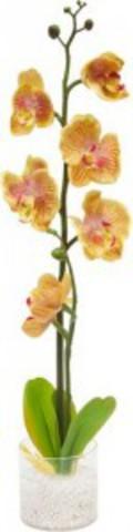 """Декоративный светильник """"Орхидея"""",желтые цветы, PL307 (Feron)"""