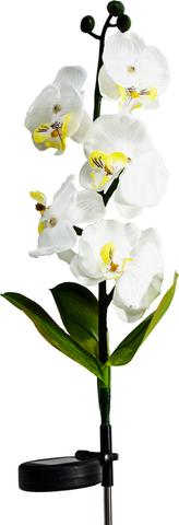 Светильник садово-парковый на солнечной батарее «Орхидея белая с желтым», 5 LED белый, 70см , PL301 (Feron)