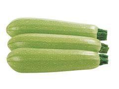 Ардендо 174 F1 семена кабачка, (Enza Zaden / Энза Заден)