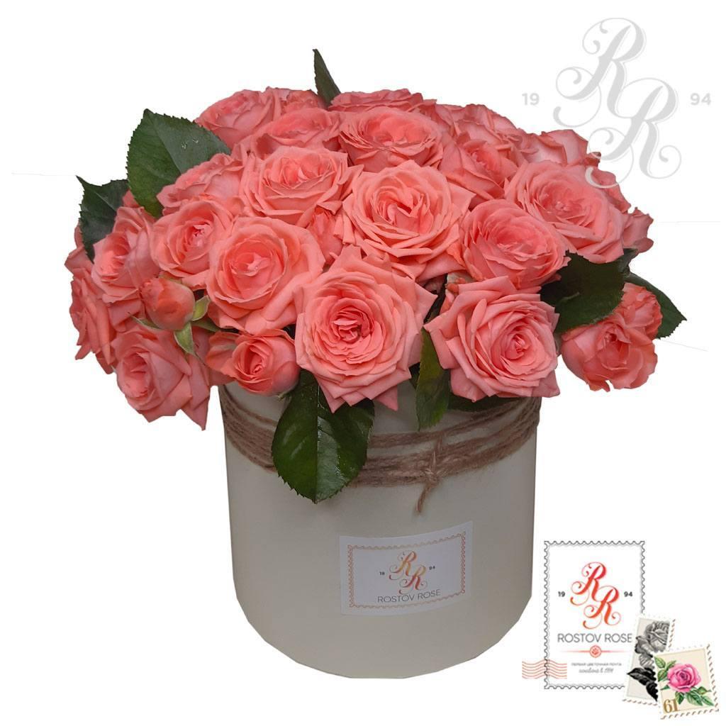 Розовая кустовая роза в коробке