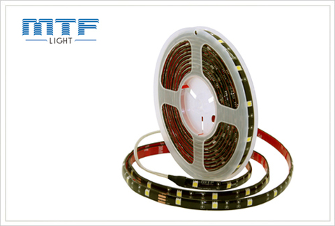 Гибкая светодиодная лента MTF Light 5X2A155WW 1м (5х1м бухта) (белый 5000К)
