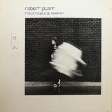 Robert Plant / The Principle Of Moments (LP)