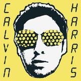 Calvin Harris / I Created Disco (2LP)