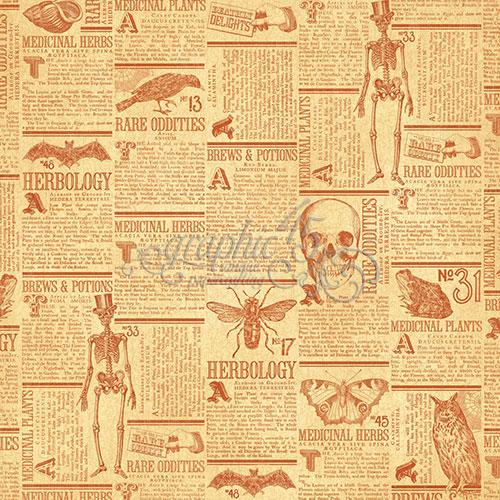Бумага для скрапбукинга Frightfully Sweet Graphic45