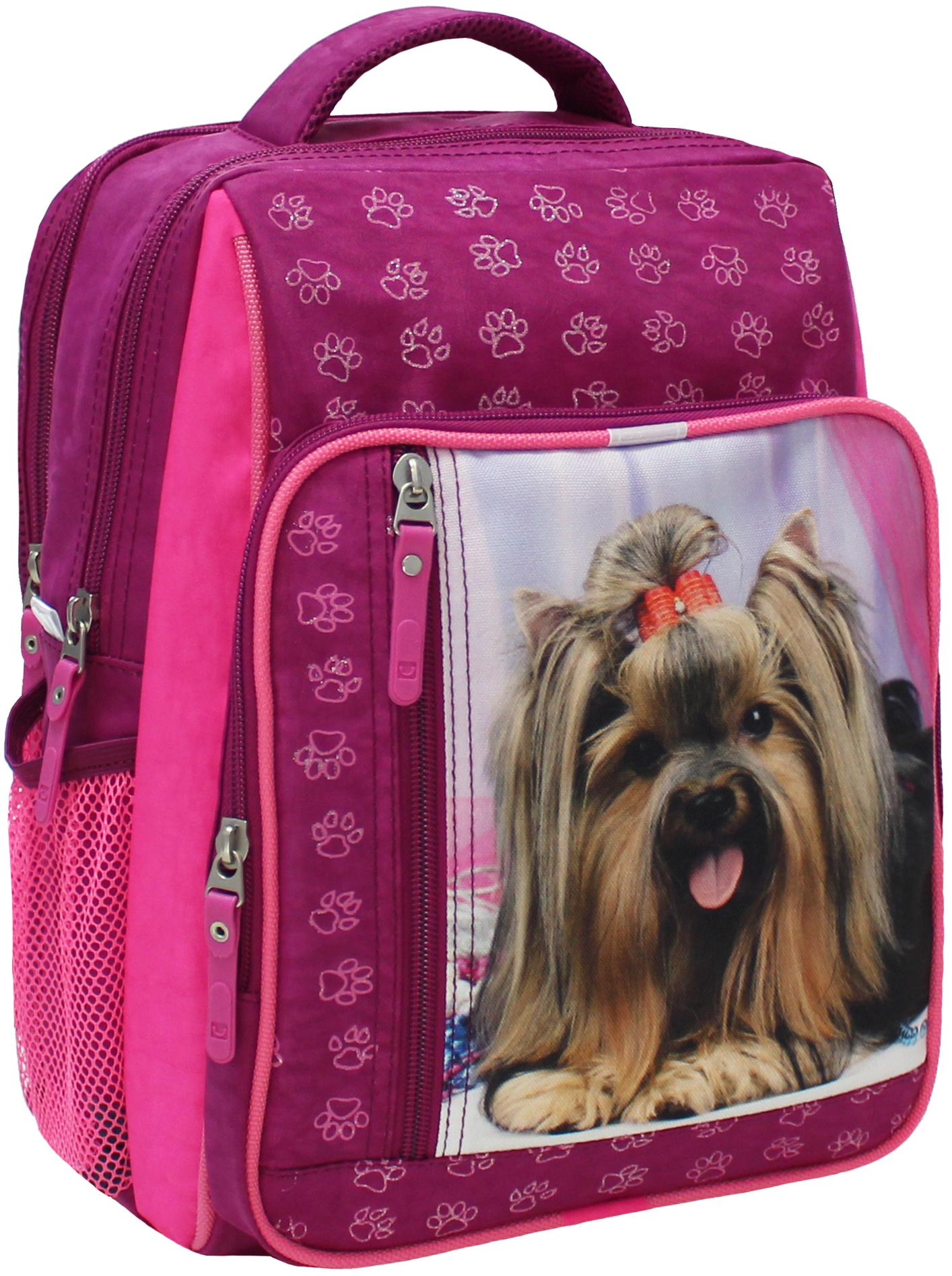 Школьные рюкзаки Рюкзак школьный Bagland Школьник 8 л. малина (собака 18) (00112702) IMG_5321.JPG
