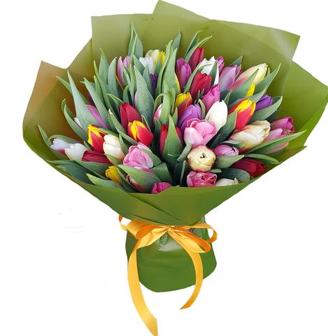 Букет из 51 микс тюльпана 2